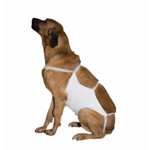 Kruuse Abdominal Bandage with Velcro